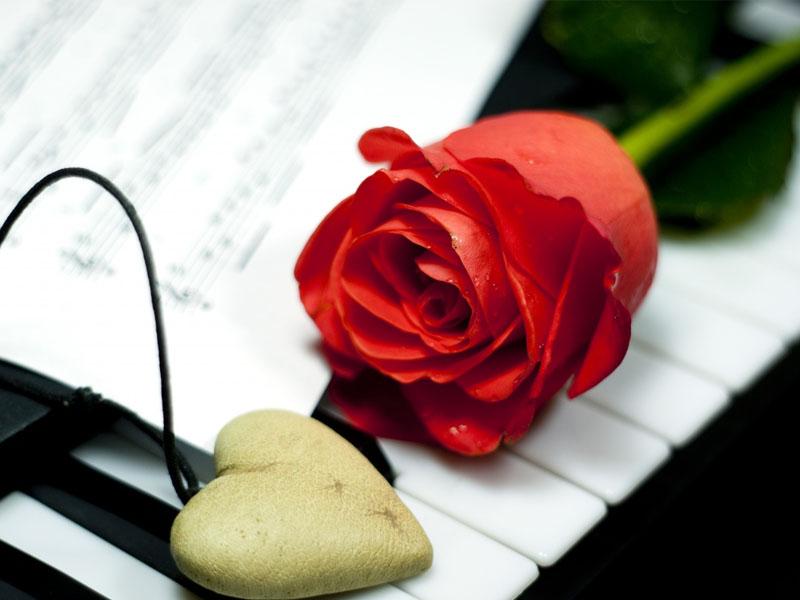 Cinta mendahulukan yang baik dan yang mendamaikan, bukan pertengkaran
